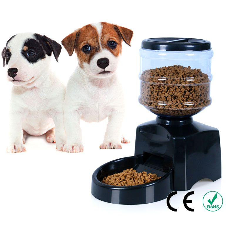 voice timer recorder programmable with feeder dog automatic pet