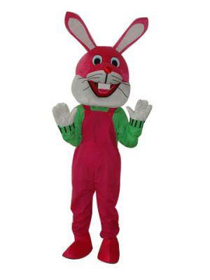 Rabbit Bunny Hare in Mascot Costume