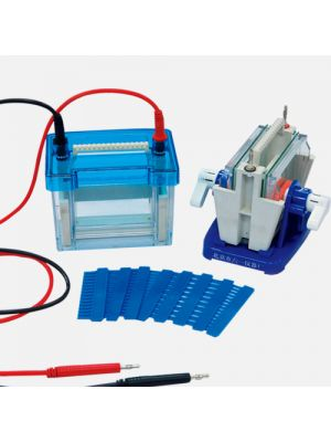 Mini Modular Dual Vertical Gel Electrophoresis Cell System 82 x 82 mm