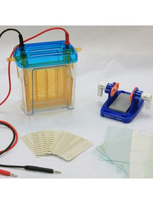 Modular Dual Vertical Gel Electrophoresis Cell System 130 x 100 mm