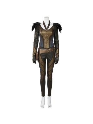 Legends of Tomorrow Hawkgirl Cosplay Costume